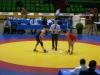 Campionati Italiani Assoluti di lotta stile libero e femminile